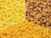 3 Way Mix-Cheddar, Caramel & Butter Popcorn